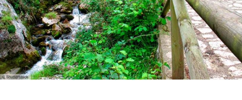 rio asturias