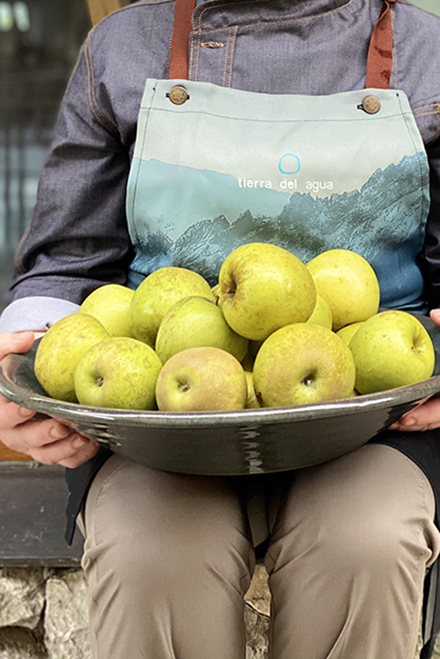 persona manzanas